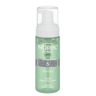 Фото Деликатная очищающая пенка Norel Skin Care Gentle Cleansing Foam